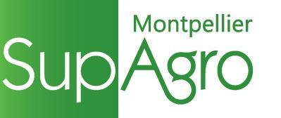 Montpellier Supagro Oenoskol dégustation oenologie vin